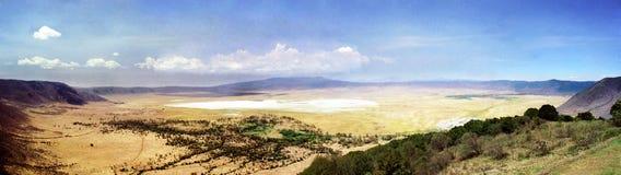 De Krater van Ngorongoro van het panorama Royalty-vrije Stock Foto's