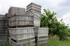 De kratten van de appel stock afbeelding