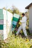 De Kratten van imkerloading stacked honeycomb binnen Royalty-vrije Stock Foto