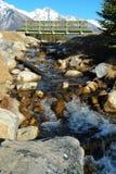 De kreek en de brug van de lente stock fotografie