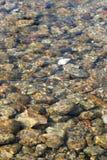 De kreek rotsachtig bed van het water Stock Fotografie