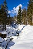 De kreek van de berg door de sneeuw Royalty-vrije Stock Foto
