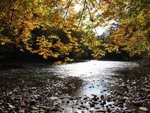 De Kreek van de herfst royalty-vrije stock foto