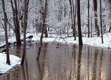 De Kreek van de wintertijd Stock Foto