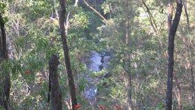 De Kreek van het westenithaca boven Simpson-Dalingen, die neer in de geul onder de nu droge dalingen kijken stock video