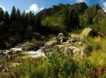 De kreeklandschap van de berg Royalty-vrije Stock Foto's