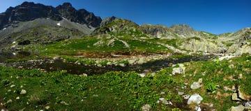 De kreekpanorama van bergen Royalty-vrije Stock Foto