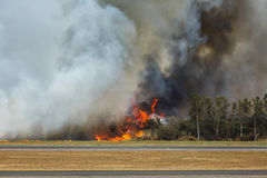 De Kreupelhoutbrand van de luchthaven Stock Fotografie