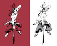 De krijgskunstenaar van Ninja Stock Afbeelding