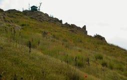 De Krim, helling, papaver, bloemen, papavers, dag, zon Royalty-vrije Stock Foto