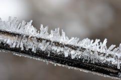 De kristallen van de rijp. Stock Fotografie