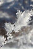 De kristallen van de sneeuw Royalty-vrije Stock Afbeelding