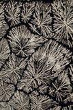 De kristallen van het Ascorbinezuur stock fotografie