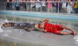 De krokodil toont Royalty-vrije Stock Afbeeldingen