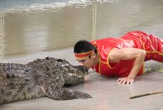 De krokodil toont Royalty-vrije Stock Fotografie