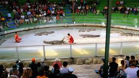 De krokodil toont Dierlijke trainer en krokodillen in de arena thailand azië stock footage