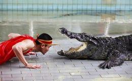 De krokodil toont in Thailand Royalty-vrije Stock Afbeeldingen