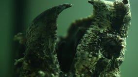 De krokodille Brekende Schildpad sloot zijn mond aan getrokken vangstvissen, sluit omhoog geschoten stock video
