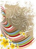De krommen van de de hibiscusregenboog van de zomer Stock Fotografie