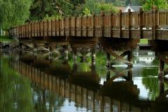 De Kromming van het park van de mannetjeseend, Oregon Royalty-vrije Stock Foto's