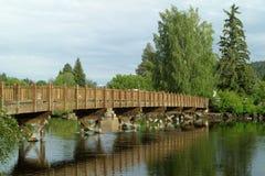De Kromming van het park van de mannetjeseend, Oregon Royalty-vrije Stock Afbeeldingen