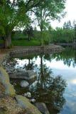 De Kromming van het park van de mannetjeseend, Oregon Stock Afbeelding