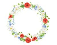 De kroon van de zomer wildflower stock illustratie