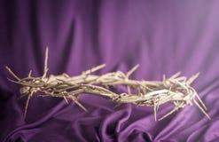 De Kroon van Doornen die Jesus Wore royalty-vrije stock foto