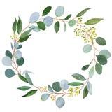 De kroon van het huwelijksgroen Waterverfillustratie met eucalyptus vector illustratie