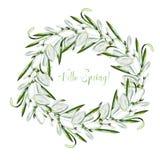 De kroon van het waterverfhuwelijk met sneeuwklokjebloemen royalty-vrije illustratie