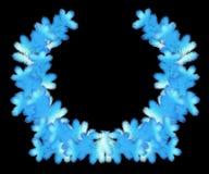 De kroon van ijskerstmis van pijnboomtakken Royalty-vrije Stock Foto's