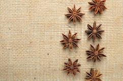 De kruiden van de steranijsplant op juteachtergrond Stock Afbeeldingen