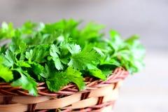 De kruiden van de tuinpeterselie Natuurlijke bron van anti-oxyderende voedingsmiddelen, folic zuur, vitamine K, vitamine C en vit royalty-vrije stock afbeeldingen