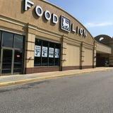 De kruidenierswinkelopslag van de voedselleeuw Stock Foto's