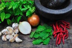 De KruidenIngrediënten van Kaprao van het stootkussen Stock Afbeelding
