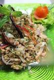 De kruidige salade van de tonijn Royalty-vrije Stock Afbeeldingen