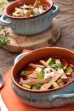 De kruidige soep van de Kippentortilla Royalty-vrije Stock Fotografie