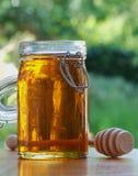 De kruik Honing met beweegt stok Stock Fotografie