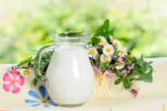 De kruik van de melk Royalty-vrije Stock Afbeelding