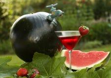 De Kruik van de watermeloen Royalty-vrije Stock Fotografie