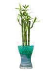 De kruik van het glas met bamboe Royalty-vrije Stock Foto