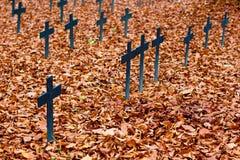 De kruisen van de de herfstbegraafplaats Royalty-vrije Stock Foto's