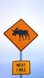 De kruising van Amerikaanse elanden Royalty-vrije Stock Afbeelding