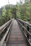 De kruising van een brug Stock Foto's