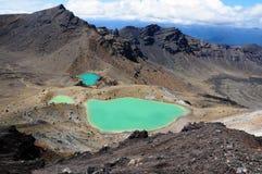 De Kruising van Tongariro - Nieuw Zeeland Stock Foto