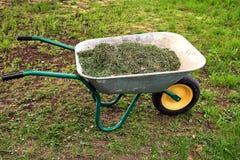 De kruiwagen van de tuin met gras royalty-vrije stock fotografie