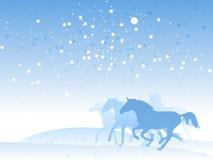 De kudde van het paard in de winter Stock Afbeeldingen