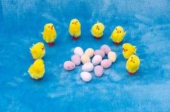 De kuikens en de eieren van Pasen Royalty-vrije Stock Afbeeldingen