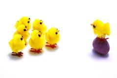 De kuikens en het ei van Pasen Stock Foto