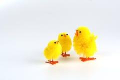De kuikens van Pasen Royalty-vrije Stock Foto